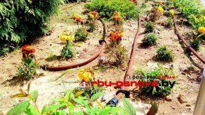 Капельная труба полива растений и овощных культур
